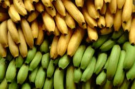 Amazing Facts About Bananas